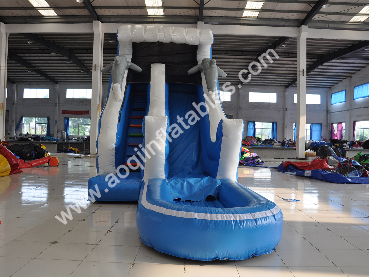 Dolphin water slide -